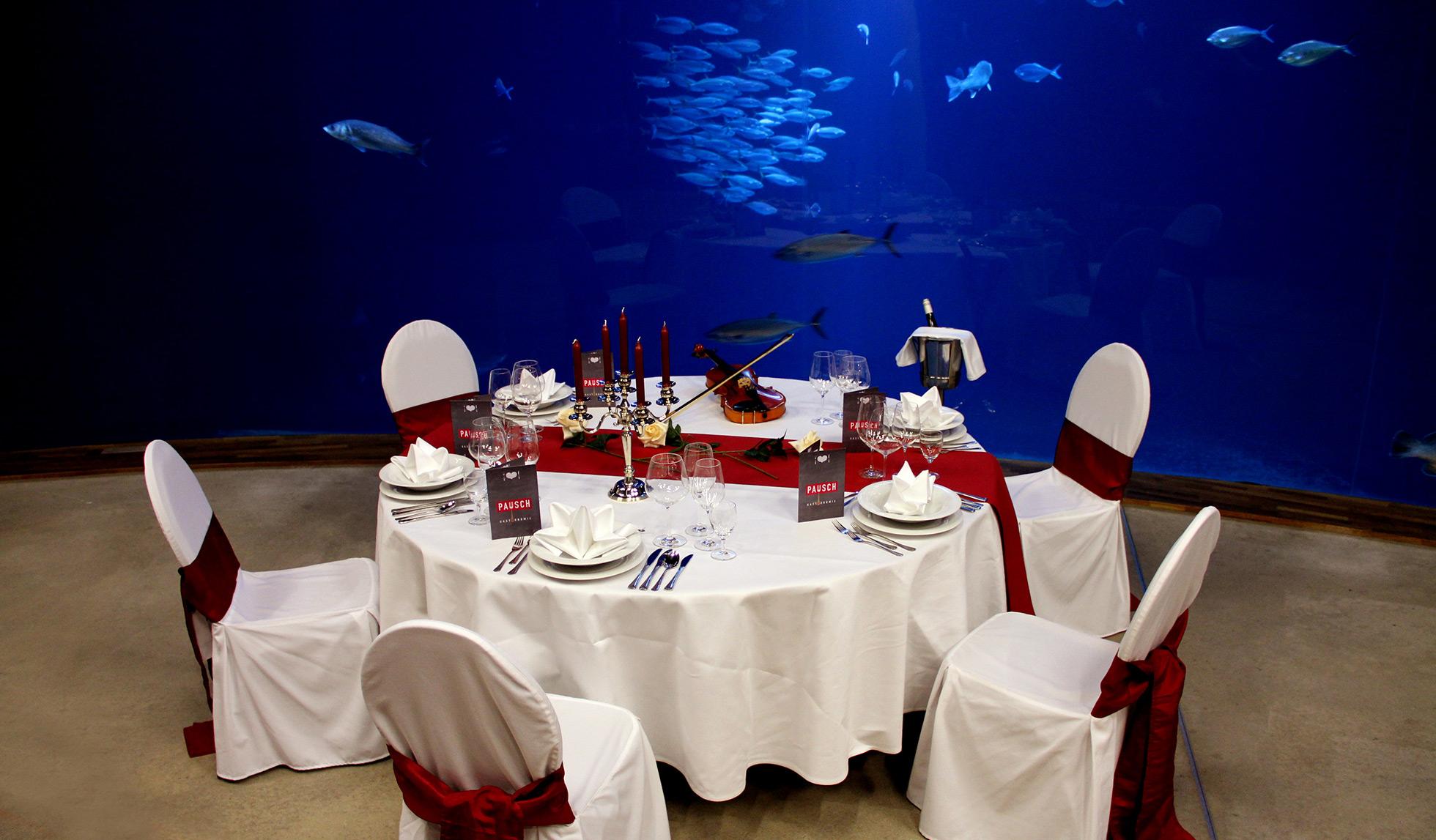 Dinner im Ozeaneum